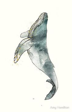 Humpback Whale #beautytatoos