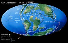During the Cretaceous the South Atlantic Ocean opened.  India separated from Madagascar and raced northward on a collision course with Eurasia. Notice that North America was connected to Europe, and that Australia was still joined to Antarctica.