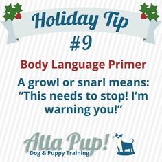 Atta Pup Training Blog: Holiday Tip #9 Often, people don't realize a dog is uncomfortable until a growl or snarl happens. However, dogs will offer many other signals well before resorting to a snarl or growl. If it's gone far enough to elicit a growl, stop the interaction immediately and make a note to be more vigilant in your observation!
