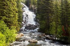 pics of waterfalls and streams and rivers | Rivers ~ Streams ~ Waterfalls / Hidden Falls, Yellowstone