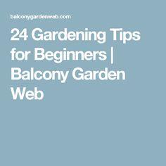 24 Gardening Tips for Beginners | Balcony Garden Web