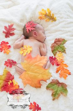 30 top Ideas for holiday baby pictures thanksgiving Fall Newborn Pictures, Fall Baby Pictures, Fall Photos, Autumn Pictures, Fall Pics, Palm Beach, Baby Am Strand, Photo Bb, Newborn Halloween