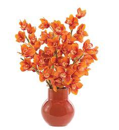Orchid Cymbidium (OF181): Orchid Cymbidium Rust, Pottery Russet, 20wx17dx29h