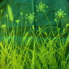 cyanotype sur tissu