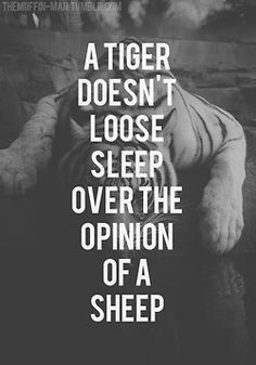 A tiger doesn't lose sleep over the opinion of a sheep