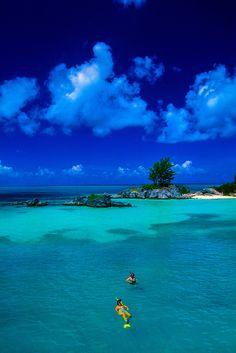 Snorkeling - #goBermuda  Stay with us! #reefsresort http://www.thereefs.com/
