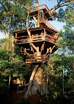 Porecatu Treehouse    A large extended family uses the Porecatu Treehouse as a weekend retreat.