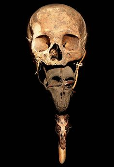Skulls and Bones Skull Head, Skull Art, Shrunken Head, Animal Bones, Human Head, Human Skull, Skull And Bones, Memento Mori, Tribal Art