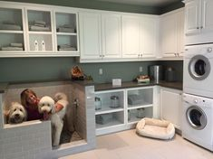View the Trendy New Built-in Home'Pet Suites' Arethe Ultimate Way to Pamper Your Pooch photo gallery on Yahoo News. Find more news related pictures in our photo galleries.