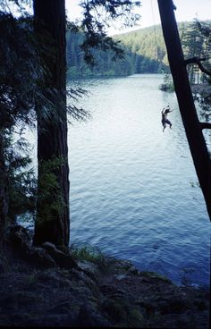 Giant rope swing