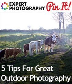5 Tips For Great Outdoor Photography-another one to check out when i get home