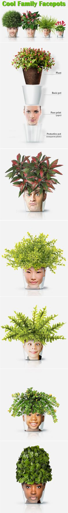 cool designs family facepots plants