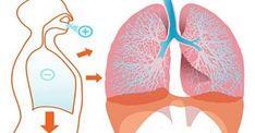 2 simples e ótimos exercícios de respiração para combater insônia e ansiedade | Cura pela Natureza