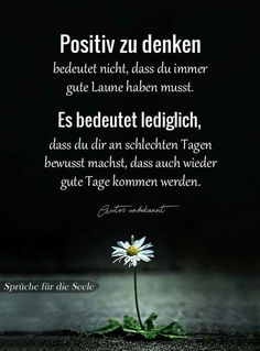 Hearty sayings and wisdom Positive Vibes, Positive Quotes, German Quotes, German Words, Cool Lyrics, Love Live, Love Your Life, Real Life, Encouragement Quotes