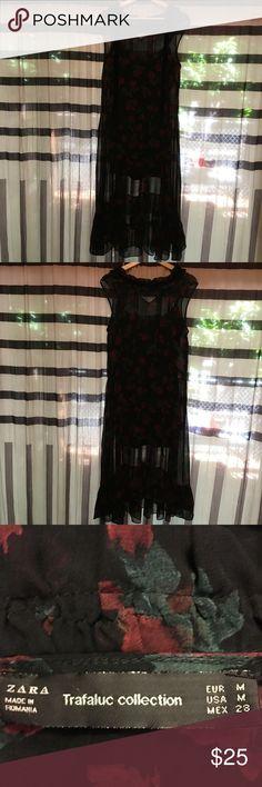 Zara rose print sheer ruffle hem dress. Size M Like new! Lace piping. Velvet tie neck. Edgy take on Victorian! Zara Dresses