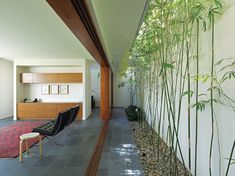 Fig Tree Pocket House | ArchitectureAU