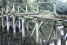 2.Photograph of the Chinese Bridge at Painshill Park before restoration. Copyright Painshill Park Trust.