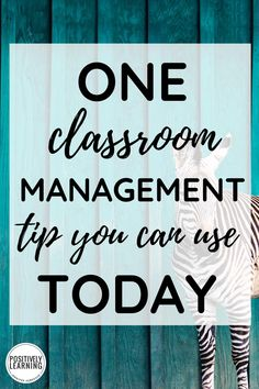 Okay, maybe I could teach without this simple classroom management tool, but I wouldn't want to! Even better, you probably have this already somewhere in your home!