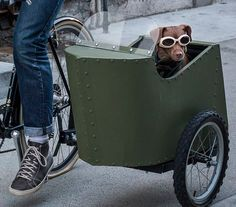 Stop Everything You're Doing and Build a Bicycle Sidecar for Your Dog Bicycle Sidecar, Bike, Dog Trailer, Go Ride, I Love Dogs, Hot Wheels, Dog Training, Your Dog, Cycling