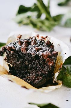 Guest Post: paleo almond flour Flourless Chocolate Zucchini Banana Muffins