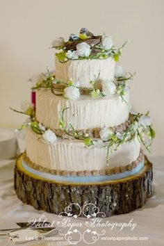 hate the bird stuff on the top....  Rustic Blue Brown Red White Buttercream Centerpieces Chairs Dance Floor Dessert Entree Flowers Hors d'Oeuvres Indoor Reception Kentucky Round Summer Topper Vineyard Wedding Cake Wedding Cakes Photos & Pictures - WeddingWire.com