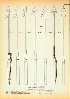 Different types of whaling harpoons
