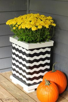 Don't let plants steal the show - let the planters get some of the attention! Blogger Erin from DIY On the Cheap shows you how to put a twist on planters with some creative use of painters tape.    @erinspain