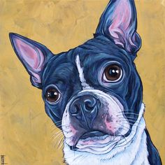 """Appa the Boston Terrier Dog Custom Pet Portrait Painting in Acrylic on 12"""" x 12"""" Stretched Canvas from Pet Portraits by Bethany."""