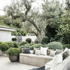 Beautiful Garden Pictures For You Our obsession with formal gardens continues. Whether French…Our obsession with formal gardens continues. Garden Seating, Outdoor Seating, Outdoor Rooms, Outdoor Living, Outdoor Decor, Outdoor Planters, Outdoor Walls, Formal Gardens, Outdoor Gardens