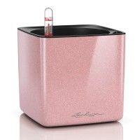Lechuza | Beliebteste Marken | Amadeo Ambiente Cubes, Rose Brillant, Tons Clairs, Teintes Pastel, Pot A Crayon, Pots, One Rose, Candy Colors, Hydroponics
