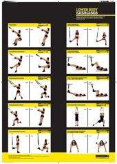 TRX Charts :: lower body