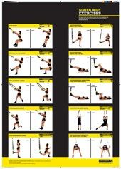 1000 images about trx workouts on pinterest  trx trx
