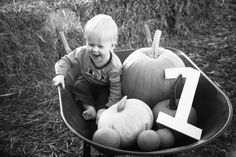 My very talented sister in law took this photo of my son. First birthday and visiting the pumpkin patch!