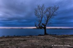 RMIngramPhotos.com posted a photo:  Waited for a potentially colorful sunset, but clouds kept rolling in, eventually obstructing the horizon.  What I did get is this lone, barren cottonwood tree, standing as a sentry watching over the lake.  I was intrigued by the levels and shades of blue and gray and also the calm lake water. Later that night we got heavy rain and wind. Some south of us got tornados.  Those black dots on the water are Coots, sometimes referred to as Mud Hens.