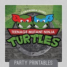 Teenage Mutant Ninja Turtle - TMNT - PARTY Package - INSTANT Download