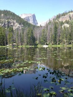 The Bear Lake Corridor Trails area in Colorado's Rocky Mountain National Park offers good day hikes in the eastern side of the park. The park is launching a yearlong celebration of its centennial in September.