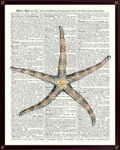Starfish Art, Star fish Poster,Nautical Art,Sea Star Print,Beach Cottage Decor,Educational Poster,bathroom decor,School decor Starfish SKUS3 by DicosArt on Etsy