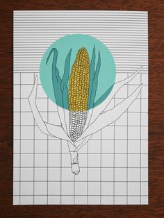 Postcard - polypodium - graphic design - illustration - Mais - corn