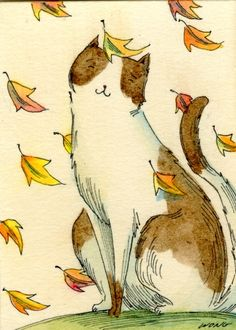 thanksgiving by nicole wong images | The Kitten and the Falling Leaves | Fine Cats & Kittens