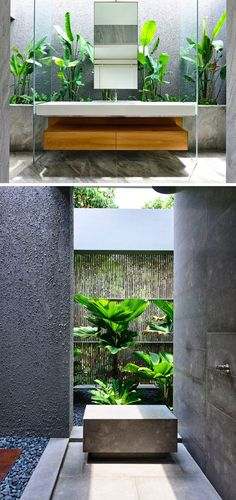 Singaporean House Completely Opens Up To The Backyard This bathroom is full of natural materials and tropical plants.This bathroom is full of natural materials and tropical plants. Tropical Garden Design, Tropical Houses, Tropical Plants, Tropical Style, Tropical Interior, Tropical Bathroom, Bathroom Plants, Tropical Toilets, Garden Bathroom