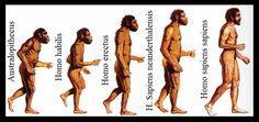 Resultat d'imatges de la prehistoria para niños evolucion hombre