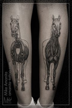 equine anatomy tattoos by mike amanita