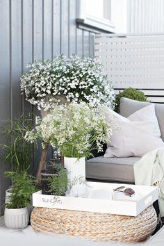 Durch die frische weiße Farben der Blumen fühlt man sich irgendwie am Meer! #tollwasblumenmachen #flower #summer