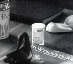 Photo by Barry FEINSTEIN. MAGNUM distribution. Los Angeles 4th August 1962. A table of Marilyn Monroe's house in Brentwood showing a pharmacy prescription by Dr Hyman Engelberg her doctor of the 25th July 1962 for Chloral hydrate as well as the pencil tin.