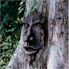 spirit of notthingham woods greeman tree--at walmart (click on pic)