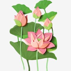 Beautiful green lotus leaf and pink lotus PNG and PSD Paper Wall Art, Paper Flower Wall, Flower Wall Decor, Paper Flowers, Paper Crafts For Kids, Diy Arts And Crafts, Origami Fish, Paper Illustration, Hand Embroidery Designs