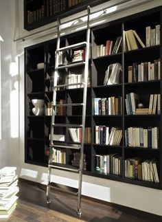 Library ladder. I like the recessed bookshelf too