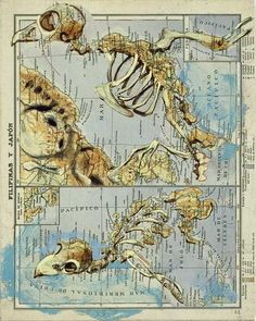 Atlas through the eyes of Fernando Vicente pics) Map Crafts, Map Painting, Spanish Painters, Atlas, Old Maps, Cartography, Creative Words, Vintage Photographs, Map Art
