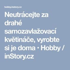 Neutrácejte za drahé samozavlažovací květináče, vyrobte si je doma • Hobby / inStory.cz