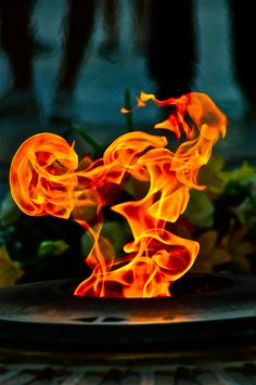 A fun image sharing community. Explore amazing art and photography and share your own visual inspiration! Wicca, Magick, Breathing Fire, Fire Photography, Fire Element, Into The Fire, Fire Art, Light My Fire, Fire And Ice